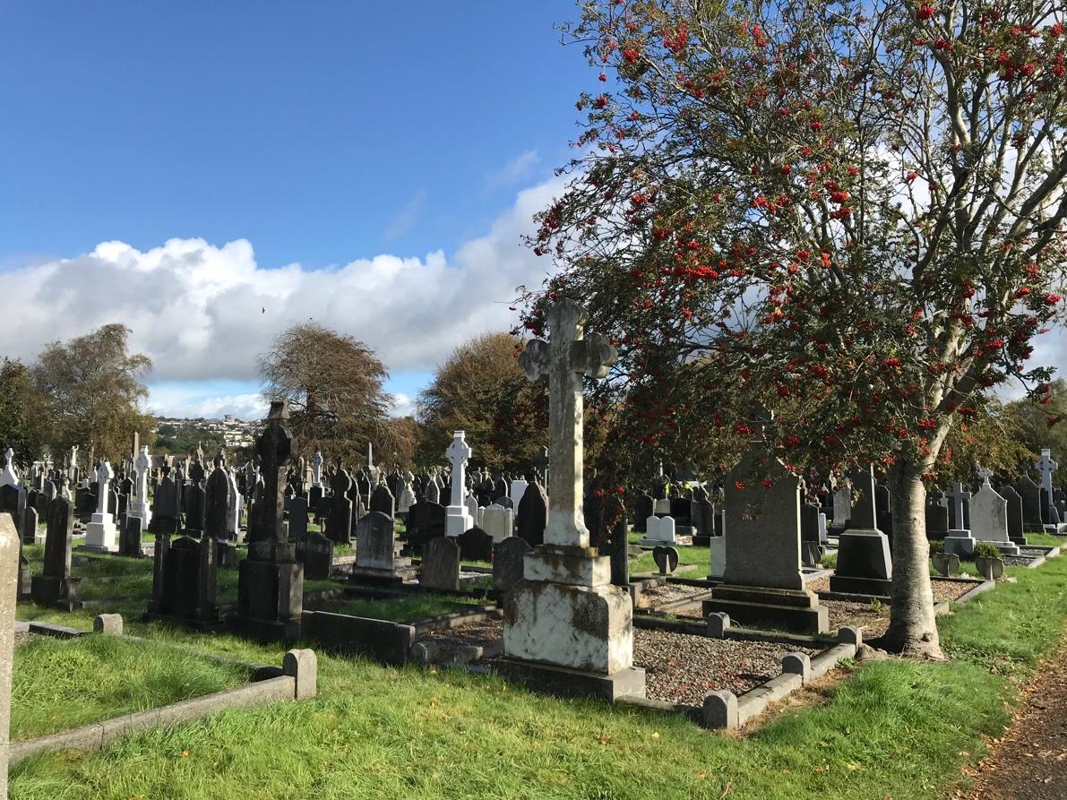 Traditional Graves Saint Finnbar'scemetery Cork, Ireland