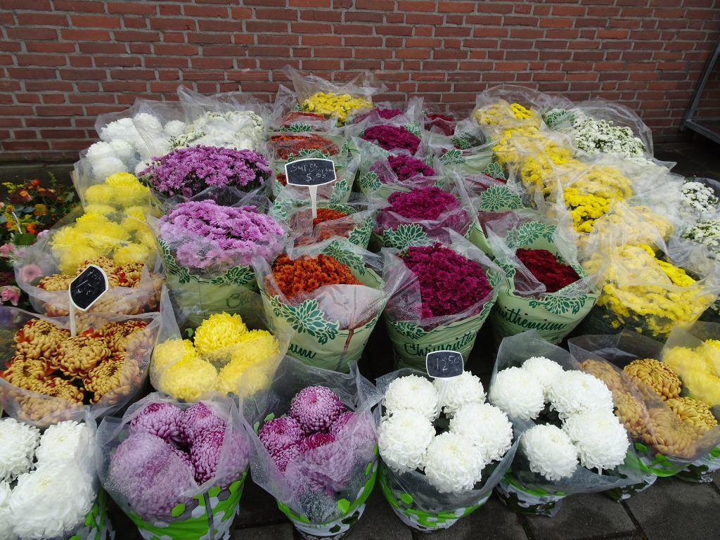 A market stall selling flowers at cemetery Tongerseweg in Maastricht, the Netherlands